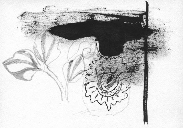 Fleurs et tache mh edc 001