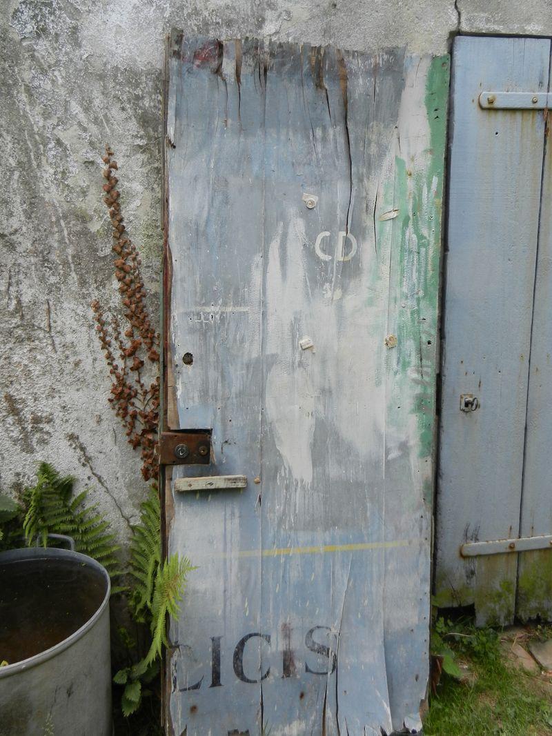 Porte mangée 1 CD DSCN0833